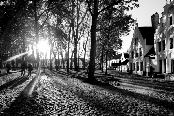 The Benguinage