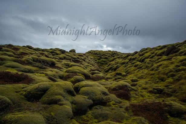 An Alien Landscape?