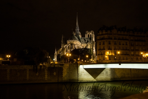 The Notre-Dame Cathedral from the island I stayed on