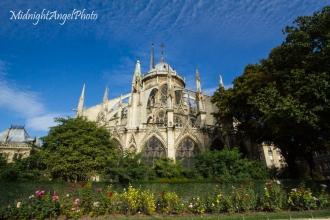 Behind the Cathédrale Notre Dame de Paris