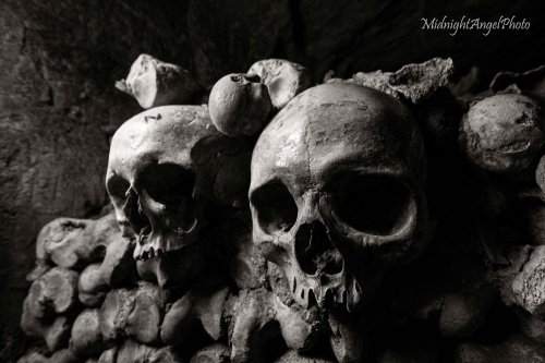 The Paris Catacombs