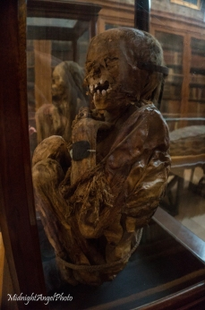 Peruvian Mummies at the Carmo Convent