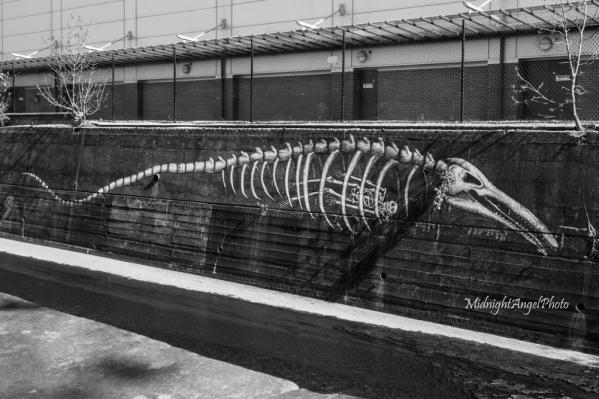 Graffiti in Sheffield