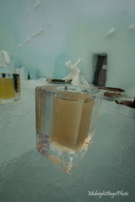 My drink in the Ice Bar, absolutely fantastic
