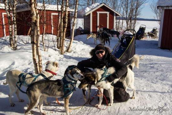 Me with my dog sled team :)